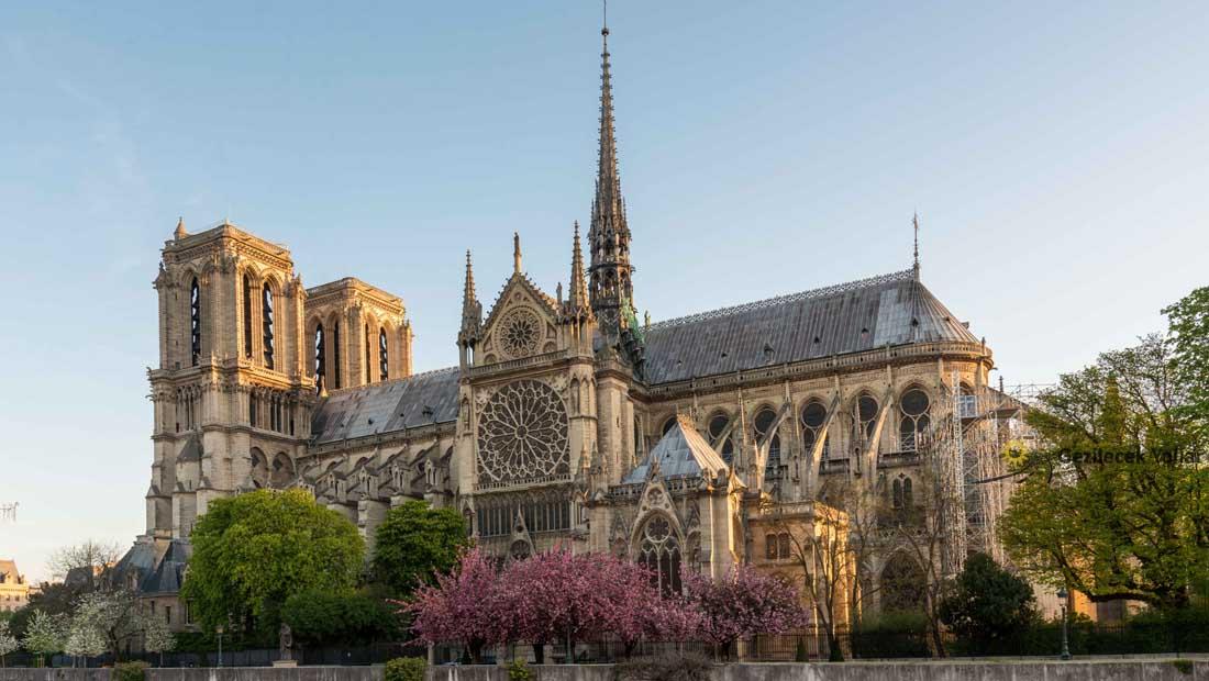Paris Gezilecek Yerler : Notre Dame Katedrali