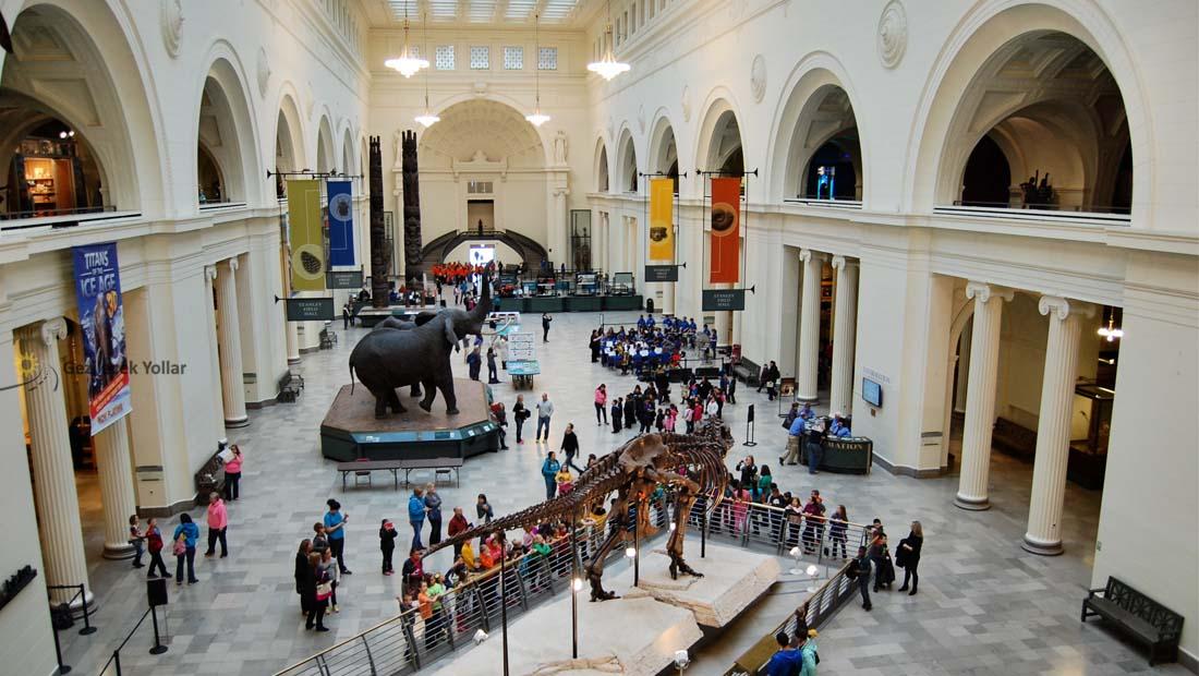 Field Doğal Tarih Müzesi, Chicago