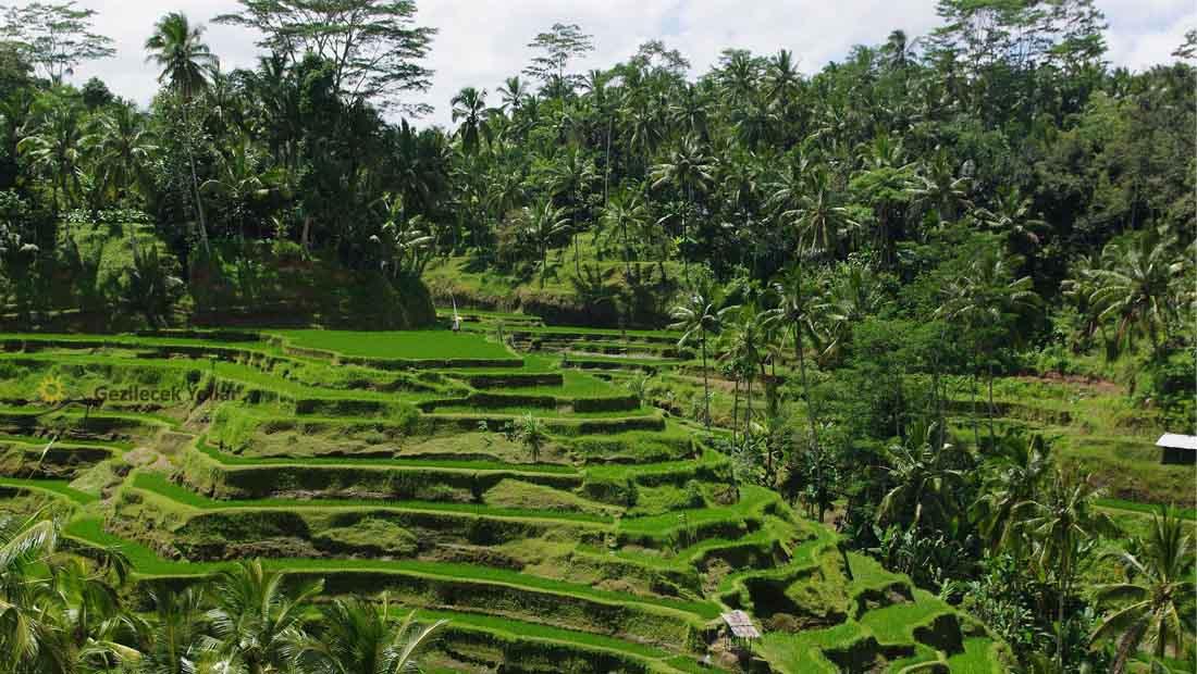 Bali Gezilecek Yerler Listesi